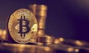 Tin kinh tế 6AM: Bitcoin lao dốc không phanh