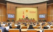 Quốc hội tiếp tục tiến hành chất vấn; phê chuẩn bổ nhiệm nhân sự