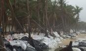 Không sớm có giải pháp, bãi biển Hội An sẽ mất?