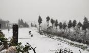 Kinh nghiệm lái xe đường băng tuyết ở Việt Nam