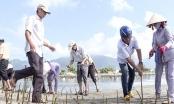 Lan tỏa mô hình tôn giáo bảo vệ môi trường