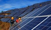 Tin kinh tế 6AM: Không phát triển ồ ạt điện mặt trời theo phong trào; Đẩy mạnh giải ngân đầu tư công từ đầu năm