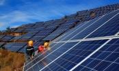 Điện mặt trời: Không có cơ chế mua giảm giá nên thừa thì cắt bỏ