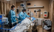 Mỹ ghi nhận hơn 500.000 ca tử vong do dịch bệnh COVID-19