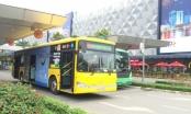 Tạm ngưng đấu giá quảng cáo trên xe buýt tại TPHCM