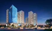 Hinode City: Sức hút khó cưỡng của căn hộ trung tâm Hà Nội