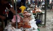 Độc đáo hội lợn quay lớn nhất Lạng Sơn