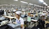 Hà Nội: Điểm tên 500 đơn vị nợ BHXH từ 6 – 24 tháng