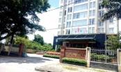Quảng Nam: Người được Google trả 727.000 USD chủ động liên hệ nộp thuế