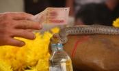 """Thông tin mới vụ """"rắn thần"""" ở Quảng Bình: Xã cắt điện, tháo rạp lúc nửa đêm nhưng bị người dân ngăn cản"""