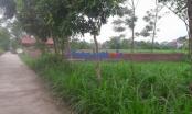 """Vĩnh Phúc: """"Quan xã"""" lộng quyền, gần 160.000 m2 đất nông nghiệp bị bán trái thẩm quyền"""