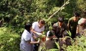 Hà Giang: Thai phụ vượt cạn hi hữu dưới khe núi