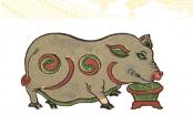 Đông y: Luận bàn về thịt lợn