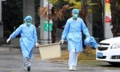 Bệnh viêm phổi do virus corona: WHO họp khẩn cấp cân nhắc tuyên bố đại dịch toàn cầu