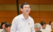 Đại biểu Quốc hội đề nghị làm rõ phát ngôn của ông Võ Kim Cự