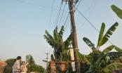 Quảng Ninh: Công nhân điện lực tử vong khi lắp đặt, sửa chữa đường dây hạ thế