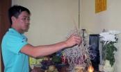 Yên Bái: Công an vào cuộc vụ học sinh tự tử sau khi bị làm nhục