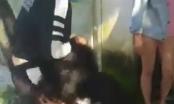 Quảng Nam: Hai thiếu nữ bị đánh dã man vì thiếu nợ 700.000 đồng?