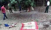 Hà Nội: Bác rể sát hại cháu rồi đào hố chôn xác sau nhà