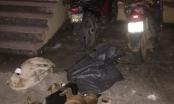 Hoà Bình: Truy bắt nhóm cẩu tặc trộm hơn 1 tạ chó