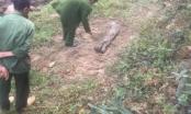 Lào Cai: Bàng hoàng phát hiện thi thể cô gái bị chôn bên bờ suối