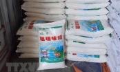 Hơn 1 tấn mỳ chính giả được nhập khẩu từ Trung Quốc về chưa kịp đi tiêu thụ thì bị bắt giữ