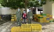 Quảng Ninh: Bắt đối tượng vận chuyển gần 32.000 con gà, vịt giống nhập lậu