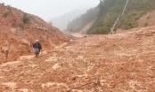 Quảng Trị: Đi tìm 7 người dân mất tích, chủ tịch và công an xã gặp nạn vì lở đất