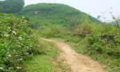 Thông tin mới nhất về người đàn ông bị cắt của quý trên đồi ở Thanh Hoá