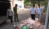 Bình Dương: Thu giữ gần 1 tấn thịt heo không rõ nguồn gốc