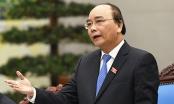 Cá chết trắng bờ biển miền Trung: Thủ tướng yêu cầu điều tra rõ nguyên nhân