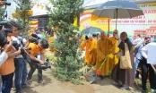 Toàn cảnh Lễ khánh thành Học viện Phật giáo Việt Nam tại TP HCM