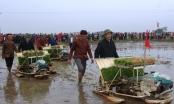 Bí thư, Chủ tịch tỉnh Thanh Hóa lội ruộng cấy lúa cùng nông dân