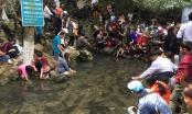 Thanh Hóa: Mướt mồ hôi chen chân đi xem cá thần