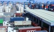 Thanh tra toàn diện việc bảo vệ môi trường trong nhập khẩu phế liệu