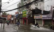 Đường phố Quảng Ninh và Hải Phòng ngập sâu, cây xanh gãy đổ ngổn ngang sau bão số 3