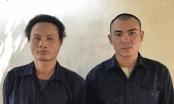 Đồng Nai: Dùng súng uy hiếp, hành hung, cướp cả chim cảnh để trừ nợ