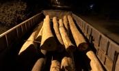 Chặn bắt nhóm đối tượng vận chuyển gỗ lậu trong đêm
