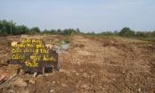 Long An: Gia đình liệt sĩ mất đất vì bị quy có nguồn gốc địa chủ