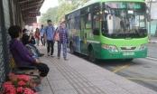 Năm 2020 TPHCM cần hơn 1.300 tỷ đồng trợ giá xe buýt