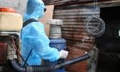 Đồng Nai đẩy mạnh phòng chống dịch sốt xuất huyết