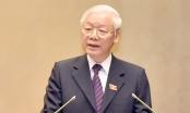 Chủ tịch nước đặc biệt quan tâm đến công tác đấu tranh phòng, chống tham nhũng