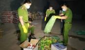 Đắk Nông: Phát hiện thuốc bảo vệ thực vật không rõ nguồn gốc xuất xứ
