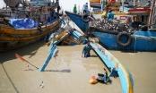 Mưa lớn kèm theo lũ quét ở Bình Thuận nhấn chìm gần 100 tàu thuyền