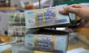 Công ty Lô Hội nợ thuế hơn 100 tỷ đồng