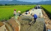 Quảng Ngãi: Hơn 1.000 tỷ đồng xây dựng nông thôn mới trong nửa cuối năm