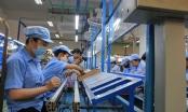 Thêm một góc nhìn về cổ phần hoá Điện Quang
