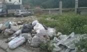 Nghệ An: Nhói lòng khu di chỉ khảo cổ học thành nơi tập kết rác