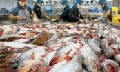 VASEP dự báo xuất khẩu thủy sản của Việt Nam sẽ đạt 7 tỉ USD năm nay