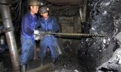 Sau thanh tra, lộ thêm nhiều vấn đề ở Tập đoàn Công nghiệp Than - Khoáng sản Việt Nam